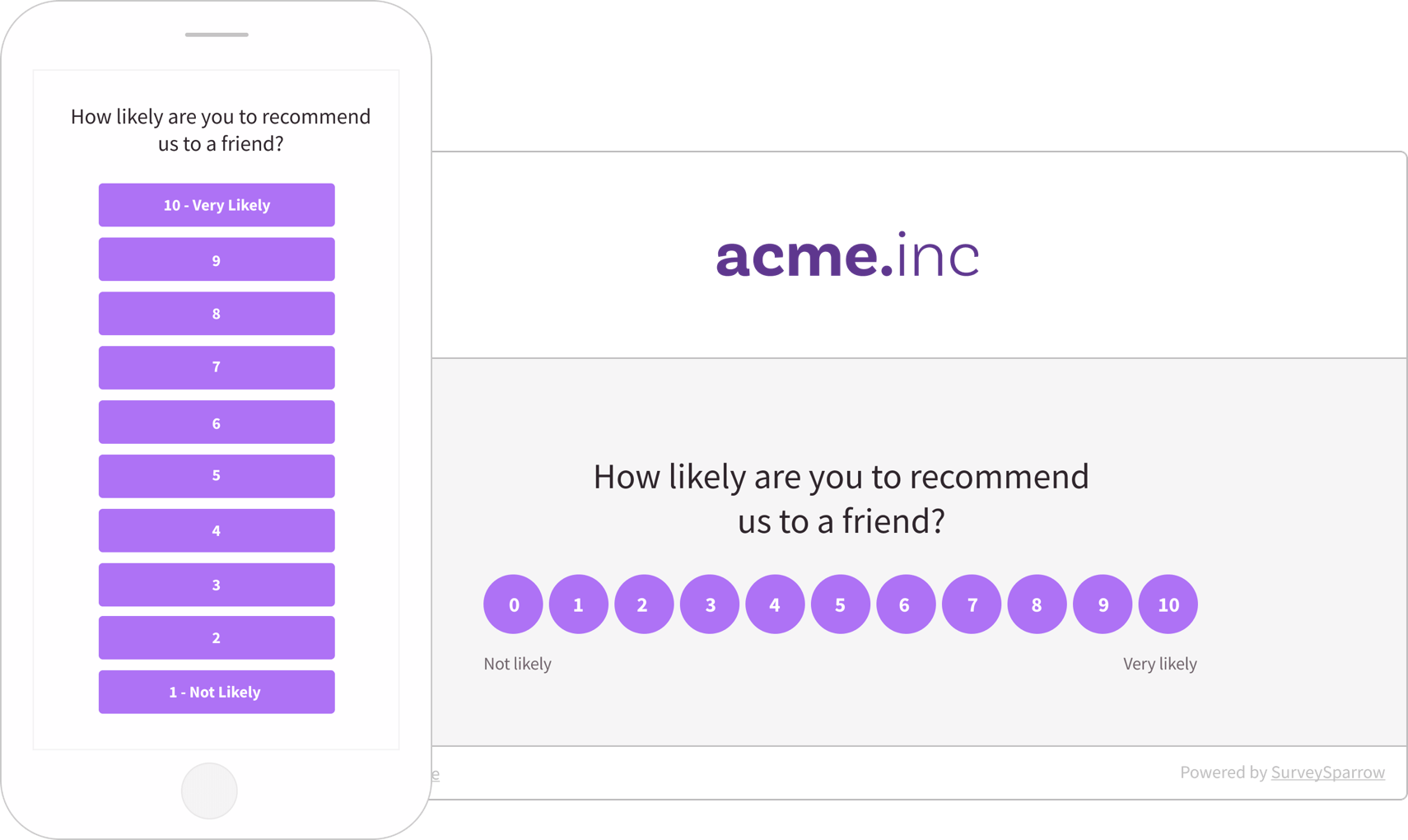 Provide a flawless customer experience using Net Promoter Score.